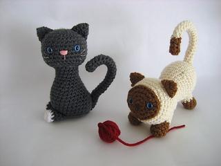 Kitten2_small2