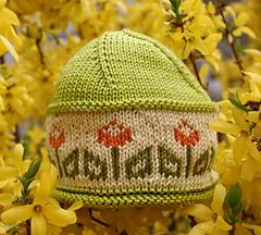 Tulip_green_top_portrait_small