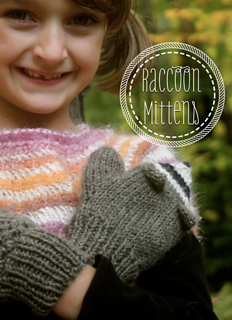 Raccoon_1_small2