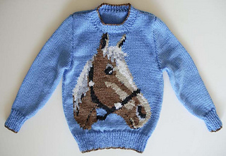 Brown_horse_jumper_oct_2010__3__small2