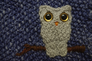 Oisin_owl_close-up_small2