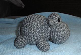 Hippo3_small2