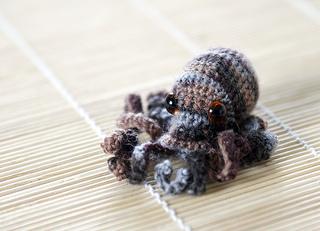 Octopus2-2_small2