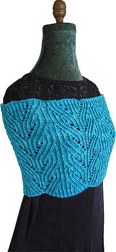 Twisted_cowl_1_2011-06-23d-blank_medium