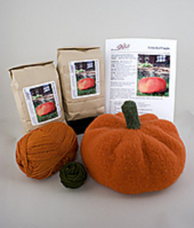 Connecticut-pumpkin-kit-for-rav_small2