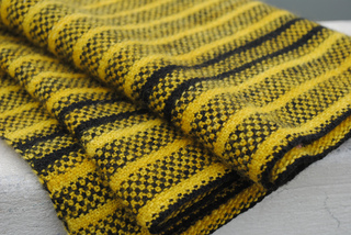 Bumble_stripes_primary_small2