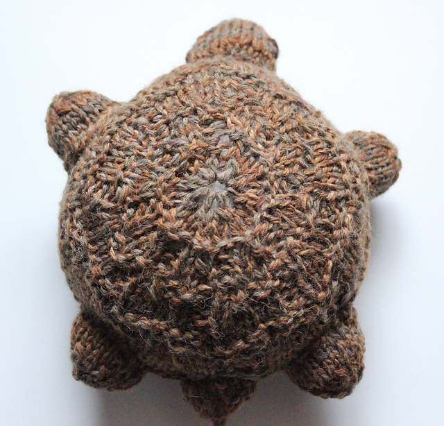 Tortoise Clothes Knitting Pattern : Knitted tortoise pattern images