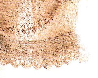 Close-up9_small2