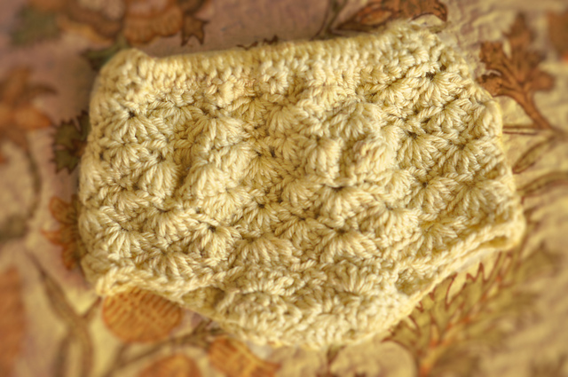 Crochet Wool Soaker Diaper Cover Pattern — Blogs, Pictures, and