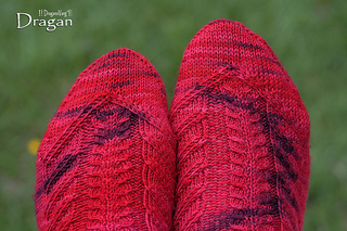 Dragansocks01_small2