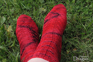 Dragansocks04_small2