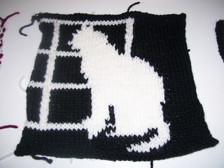 Windowcat_small2
