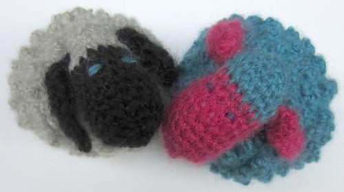 Chubby_sheep_kissing_medium