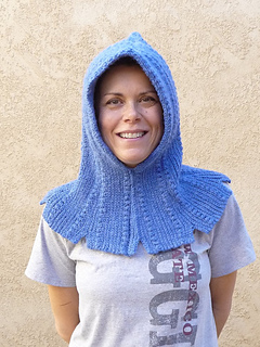 Hood_front_small2