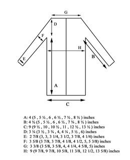 Ava_final_schematic_copy_small2