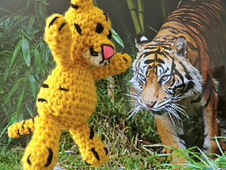 12-29-2012-tiger_small2
