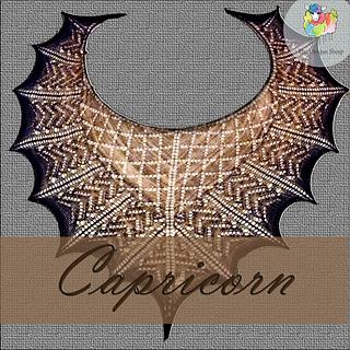 Capricorn3_small2