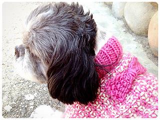 Tweedledeena_bow_shiri_designs_small2