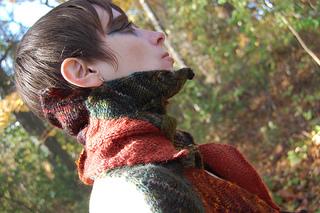Druidess_scarf_shiri_designs_nov_2010_tilt_small2