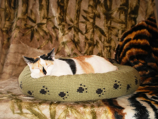 Dog_cat_bed_shiri_designs_02_11_portrait_small2
