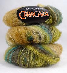 Queenslandcaracara011d_small