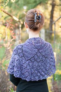 Melissa_s_shawl__8_of_48__small2