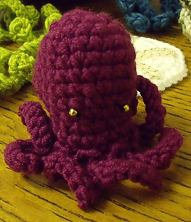 Pygmy_octopus_medium_small2