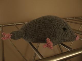 Mole1_small2