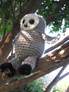 Owlet_-_02_small2