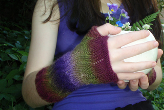 Vine_mitts_4_small2