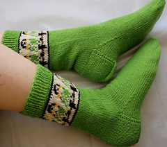 Budgiesocks7a_small