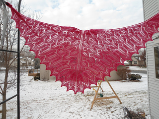 Flor_shawl_013_small2