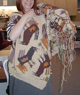 Bird_sweater_cropped_june05_emf_small2