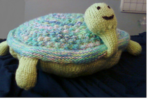 Knitted_turtle_completed_11_14_09_2_small2