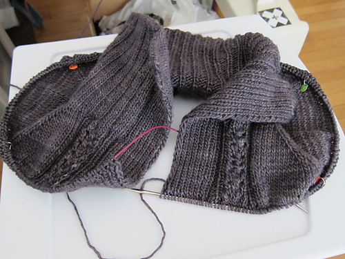 cozy cardi progress