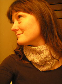 Warmercowl_small2
