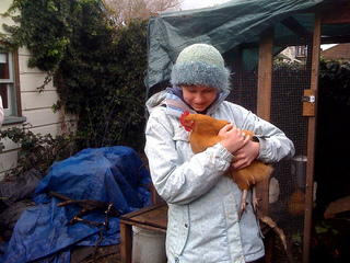 Chickens_small2