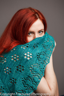 Knitting_0071_small2