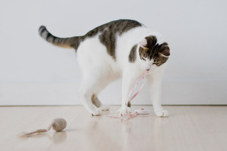 Mouse_toy_2-06715_small2