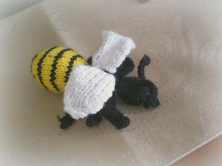 Wasp2_small2