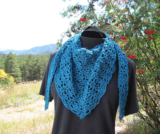 Littlewingsshawlette01_small2