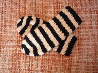 Zebra1_small2