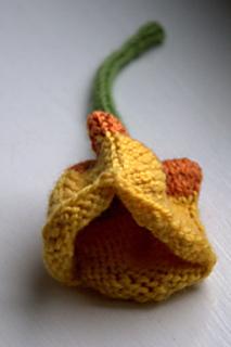 Tulip2_small2