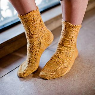 Cf_socks_1_small2