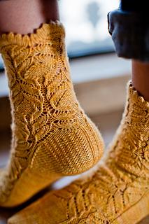 Cf_socks_2_small2