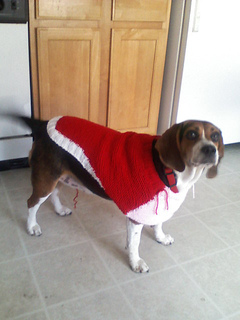 Dog_sweater_small2