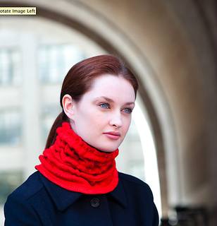 Red_cowl_rav_small2