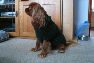 Beaussweater_011_small2