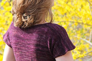 Helena_sfolly_coverback_the_knitting_vortex_small2