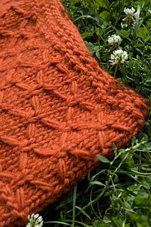 Orangeponchograss1__1__small2
